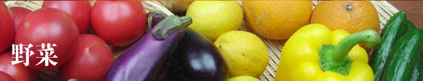 syokudo_vegetables_topimage834.jpg